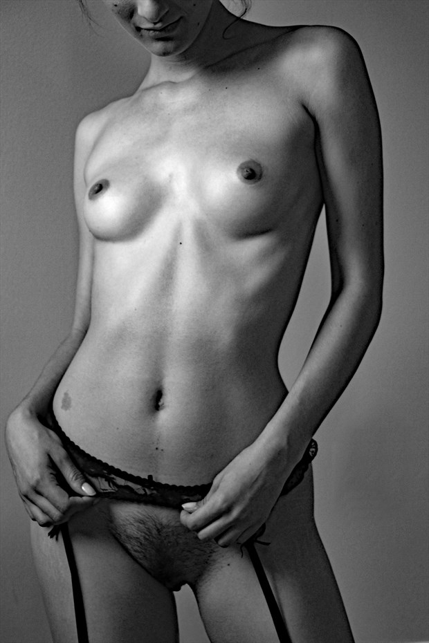 Diaphonous Love Artistic Nude Photo by Photographer Robert L Person