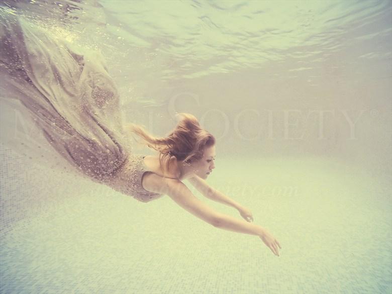 Dive In Natural Light Photo by Photographer Karen Jones