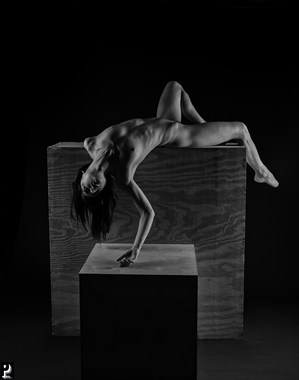 Draped Artistic Nude Artwork by Photographer Thom Peters Photog