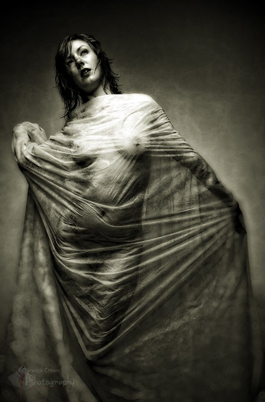 Draped Artistic Nude Photo by Photographer Incidental Pixel