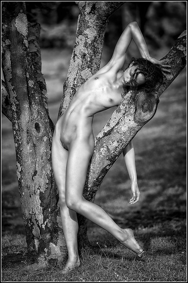 Draped Artistic Nude Photo by Photographer Magicc Imagery