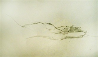 Drawing Artistic Nude Artwork by Artist Nicola