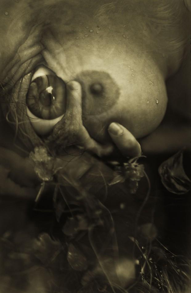 Dream Tendrils Artistic Nude Photo by Photographer jeffrey m fletcher