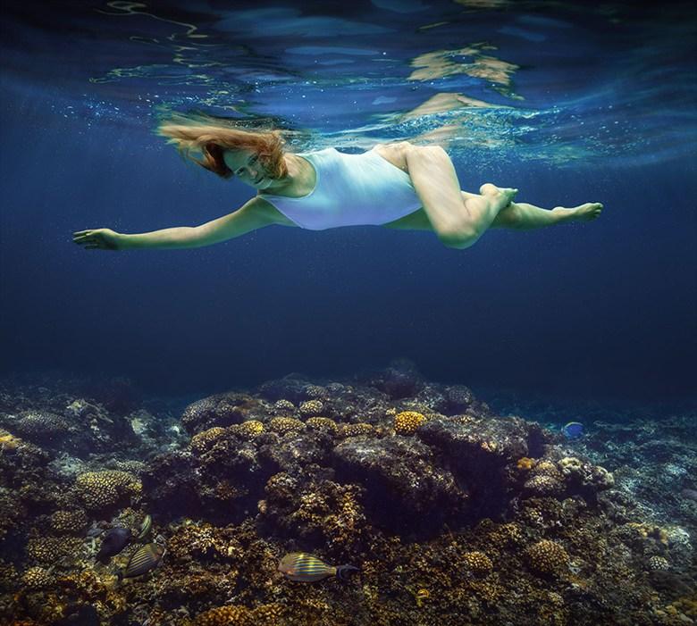 Dream. Bikini Photo by Photographer dml