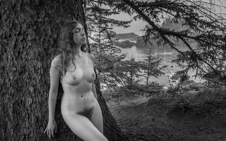 Dreaming Artistic Nude Photo by Photographer Inge Johnsson