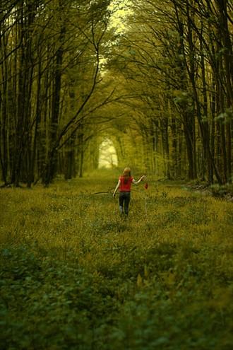 Dreaming Nature Photo by Photographer JoRain