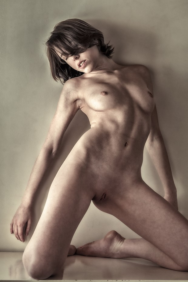 Dresser Series Again... poly Artistic Nude Photo by Photographer rick jolson