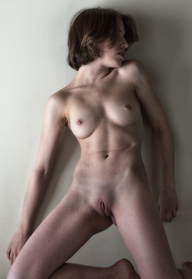 Dresser Six   poly Artistic Nude Photo by Photographer rick jolson