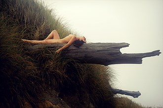 Driftwood Dreams Artistic Nude Photo by Artist AnneDeLion