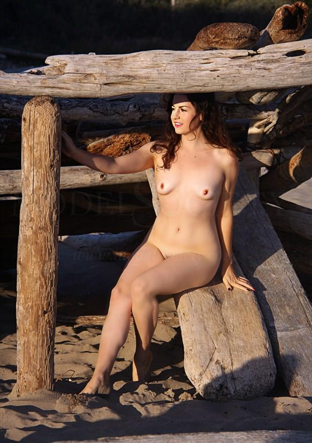 Driftwood Frame Artistic Nude Photo by Artist AnneDeLion