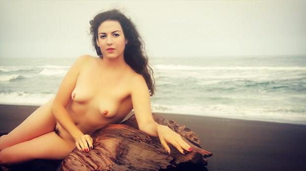 Driftwood Nymph Artistic Nude Photo by Artist AnneDeLion