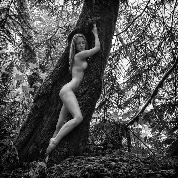 Dryad Artistic Nude Photo by Photographer Randall Hobbet