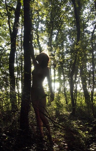 Dryad and her tree Artistic Nude Photo by Photographer Jonathan Charles
