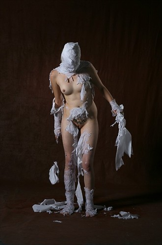 Duchamp's Bride Artistic Nude Photo by Photographer lawrencew
