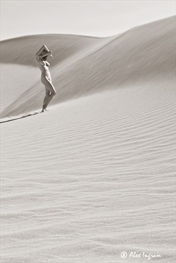 Dunes Artistic Nude Photo by Photographer Fleeting Image