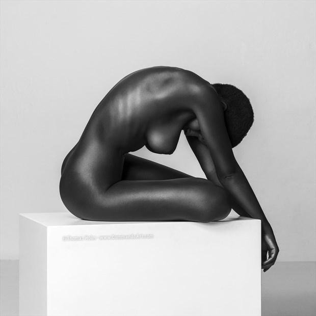 Ebony Carving Artistic Nude Photo by Photographer CommandoArt