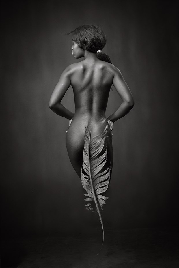Ebony Feather Artistic Nude Artwork by Photographer Rossomck