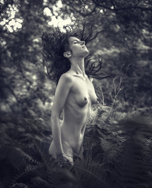 Elven tale. Artistic Nude Photo by Photographer dml
