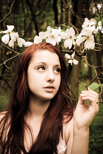 Enchanted Nature Photo by Photographer That Redhaired Girl's Photography