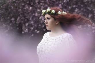 Enchantment Nature Photo by Photographer AngiW