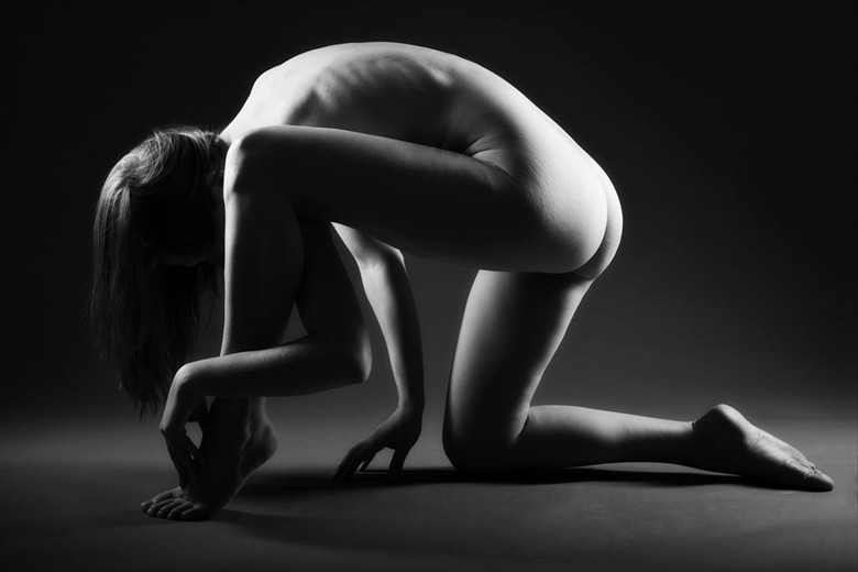 Entanglement Artistic Nude Photo by Photographer John Evans