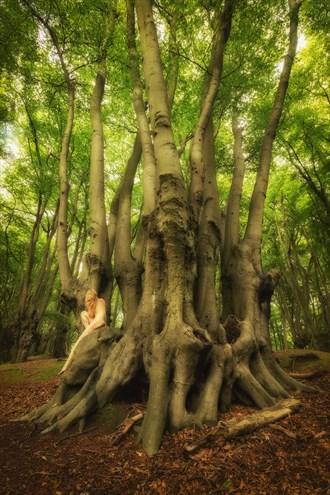 Epping Beech Altar Artistic Nude Photo by Photographer TreeGirl