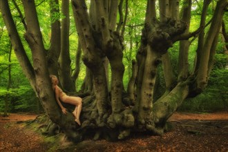 Epping Forest Secret Nature Photo by Photographer TreeGirl