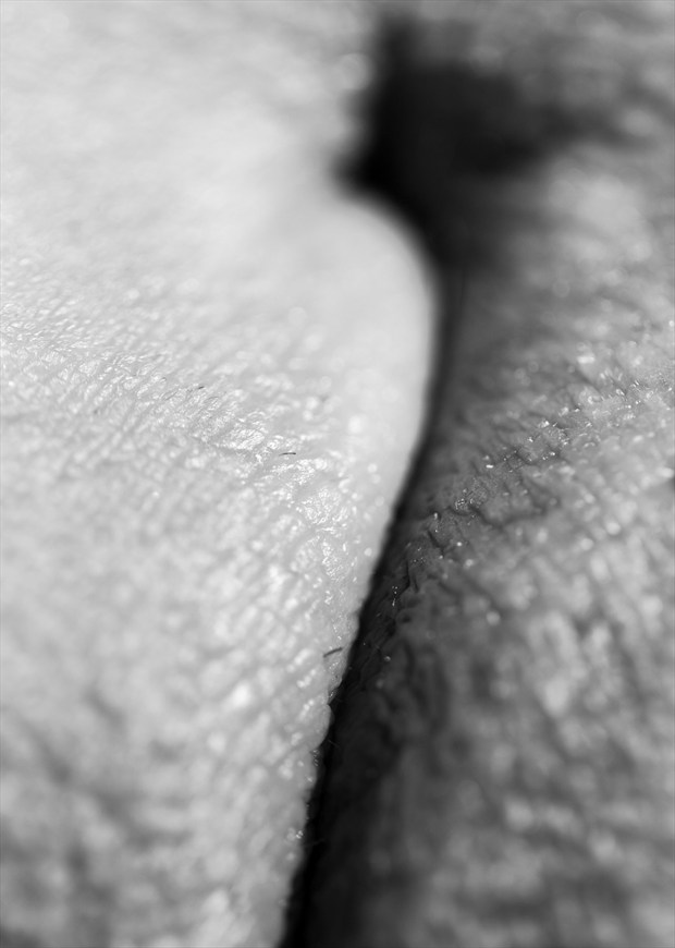 Erotic Abstract Photo by Photographer Axiaelitrix