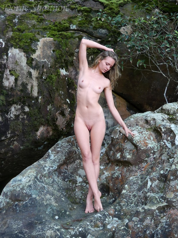 Evelyn Artistic Nude Photo by Photographer Dorne Shannon