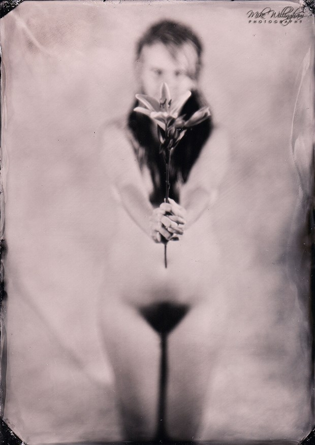 Evelyn with Lily   Wet plate on 5x7 tintype Artistic Nude Photo by Photographer Mike Willingham