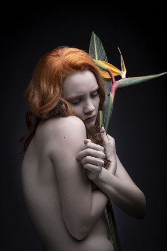 Everything will be fine Artistic Nude Photo by Model BloodyBetty