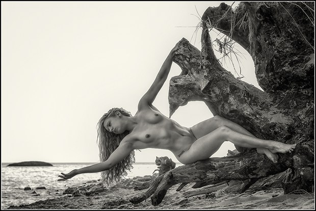 Extentions of Drift Wood Artistic Nude Photo by Photographer Magicc Imagery