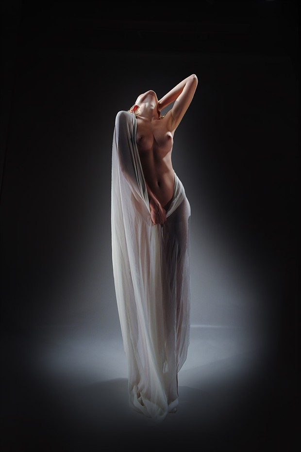 Fabric,light and a beautiful body Artistic Nude Photo by Photographer pmurph