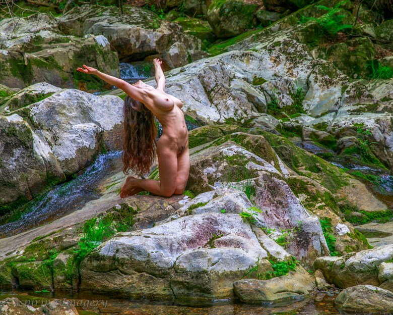 Falling Waters Dance Nude No. 7 Artistic Nude Photo by Photographer Aspiring Imagery