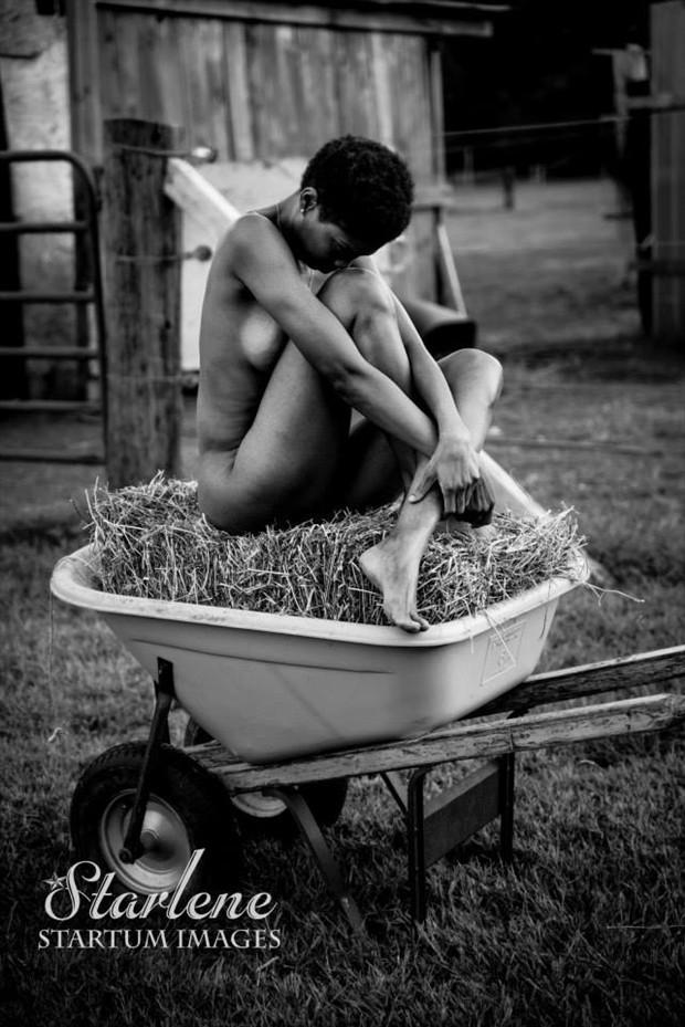 Farm Nudes Artistic Nude Artwork by Model Tribbey