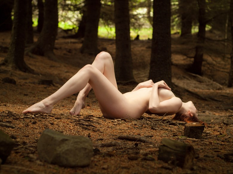 Feel the nature Artistic Nude Photo by Photographer Odinntheviking