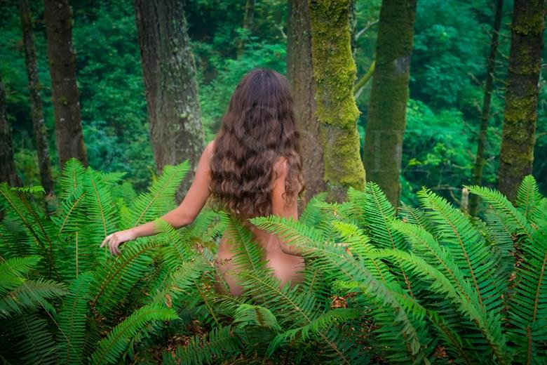 Fern Goddess Artistic Nude Photo by Photographer Inge Johnsson