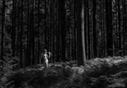 Fern Land Artistic Nude Photo by Photographer CommandoArt