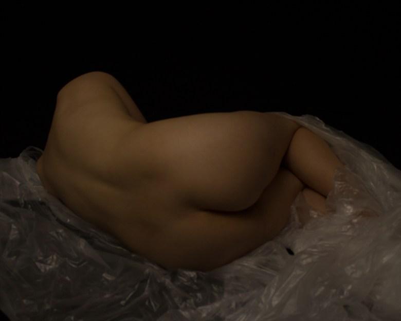 Figure Study   Amy Artistic Nude Photo by Photographer ShadowandLightPhotos