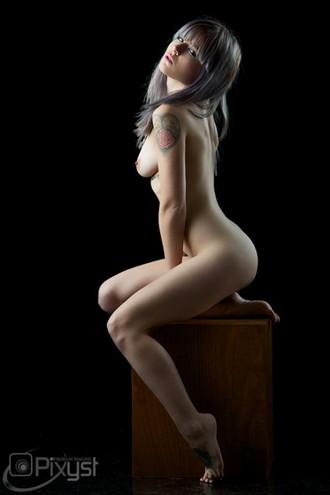 Figure Study Artistic Nude Artwork by Model Plush
