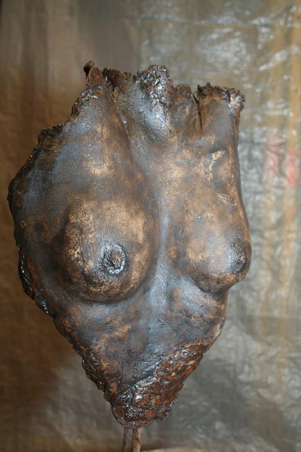 Figure Study Artwork by Artist jacek t
