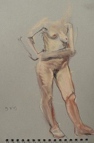 Fiona standing, hands on right hip Artistic Nude Artwork by Artist Ciaran Taylor