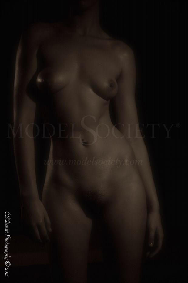 Fit woman, nude  Artistic Nude Photo by Photographer CSDewitt Buck