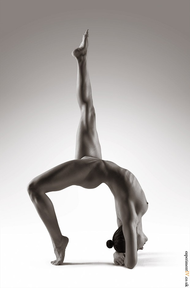 Flex Artistic Nude Photo by Photographer Terry King