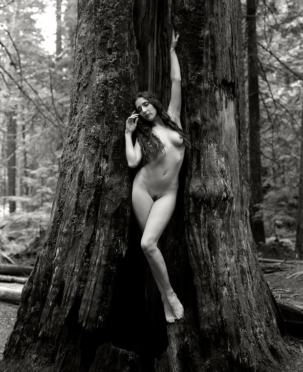 Flidais Artistic Nude Artwork by Photographer Christopher Ryan