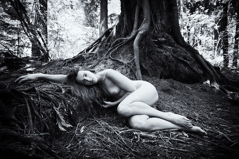 Flora Model Artistic Nude Photo by Photographer Phil O%60Donoghue