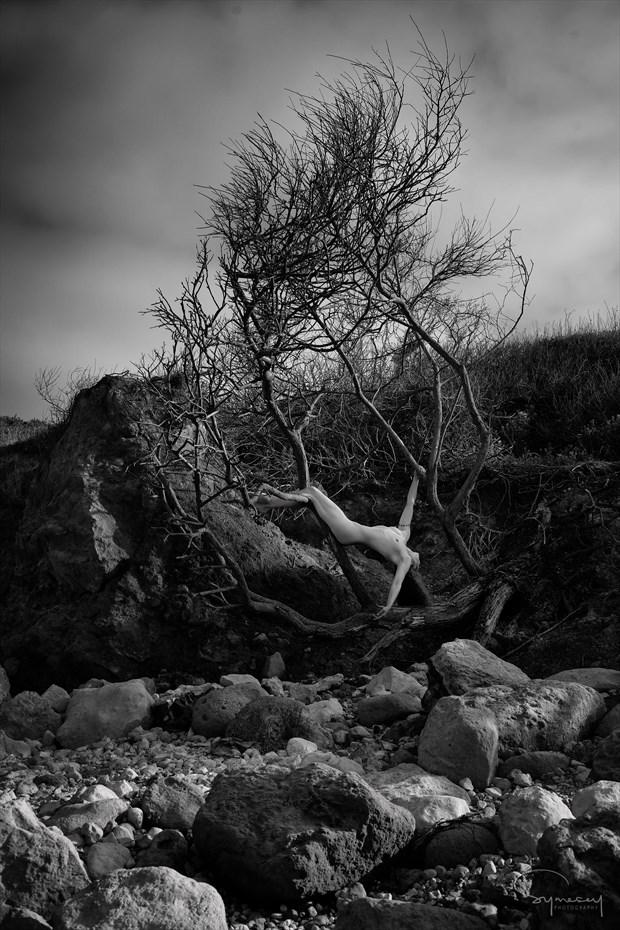 Flotsam Artistic Nude Photo by Photographer Symesey