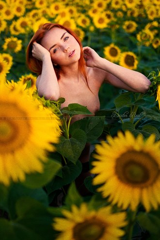 Flower in the Field Artistic Nude Photo by Photographer dexter