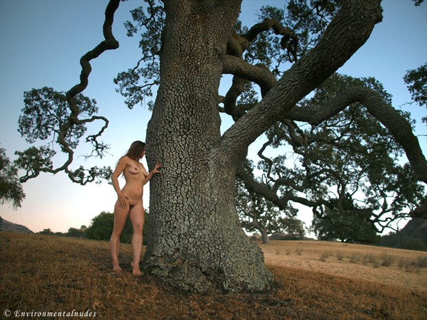 Foothills of the Diablo 1 Artistic Nude Photo by Photographer Environmentalnudes