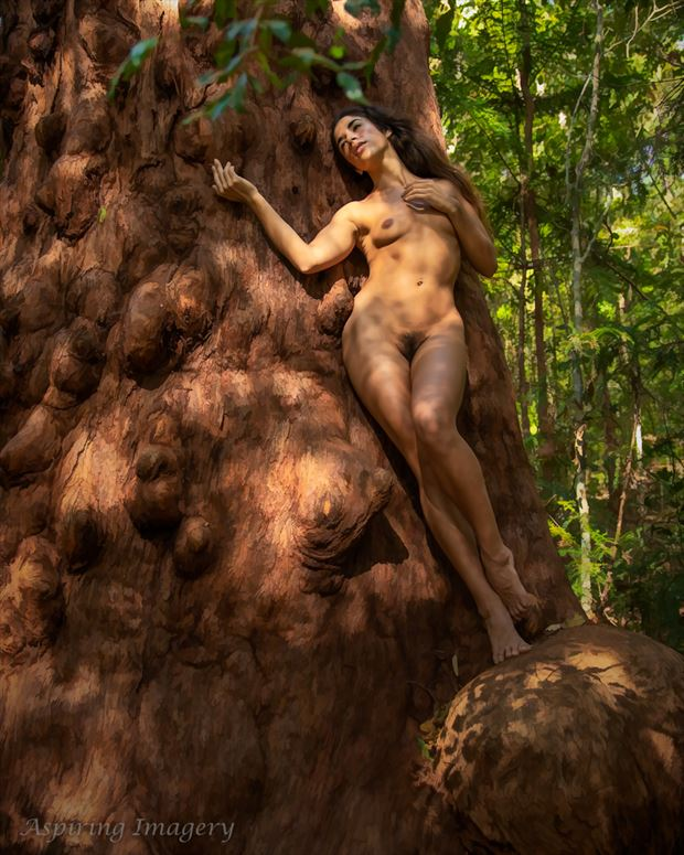 Forest Rapture Artistic Nude Photo by Photographer Aspiring Imagery